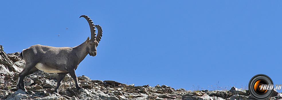 Emosson photo3