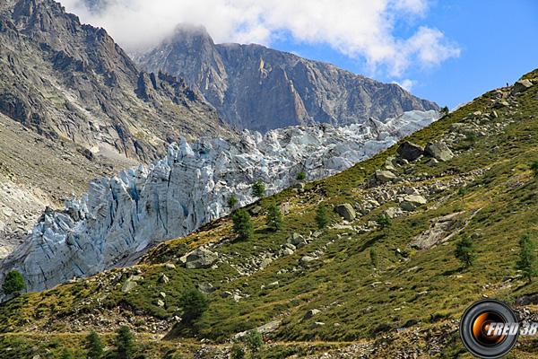 Glacier d argentiere photo2