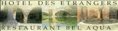 Hotel des etrangers logo