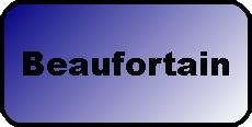 Logo touche massif beaufortain