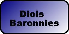 Logo touche massif diois