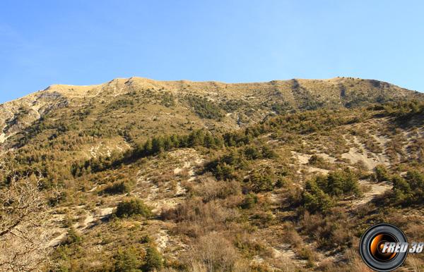 Montagne carton photo