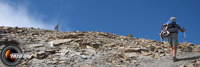 Tete de vautisse photo3