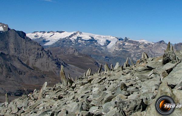 Tour glacier photo0