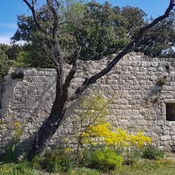 Chateau de Barry.