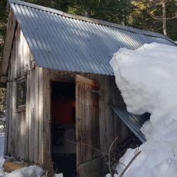 Cabane située dans les bois.