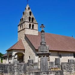 L'église de Vieu.