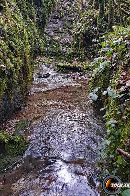 Le canyon de la Fouge.