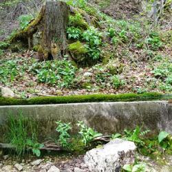 Fontaine de Fretevieille
