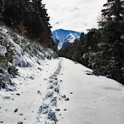 Mont Blayeul