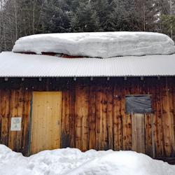 Cabane forestière de la Fullie.