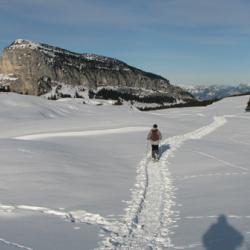 Le plateau et en fond le mont Granier.