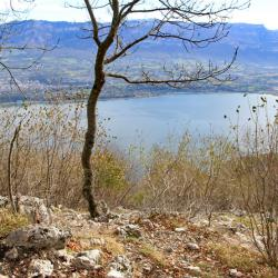 Lac du Bourgey
