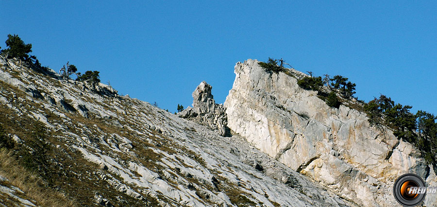 Le haut de la Combe aux Chevaux.