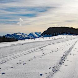 Passage sur la piste de ski nordique.