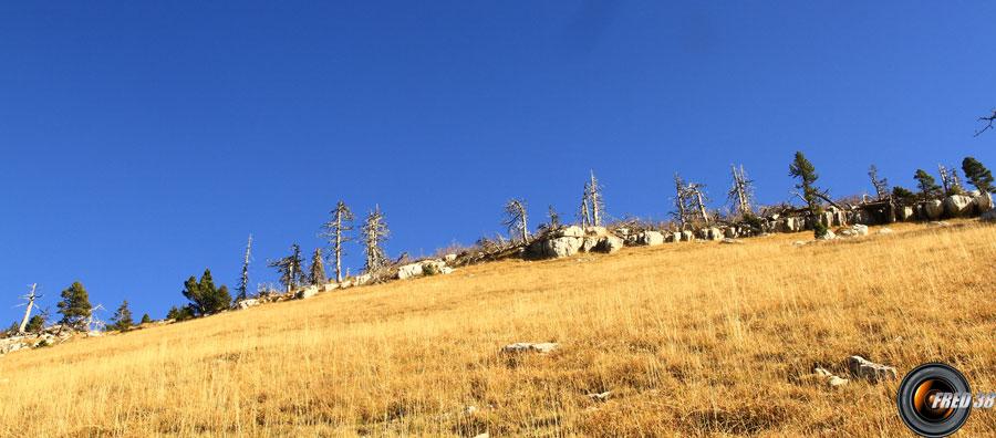 La crête avant le col de l'Alpe