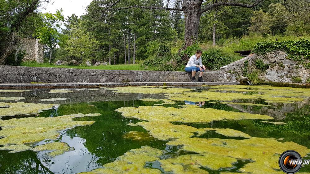Le grand bassin près du gîte.