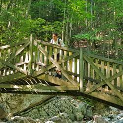 La passerelle avant le pont Peirant.