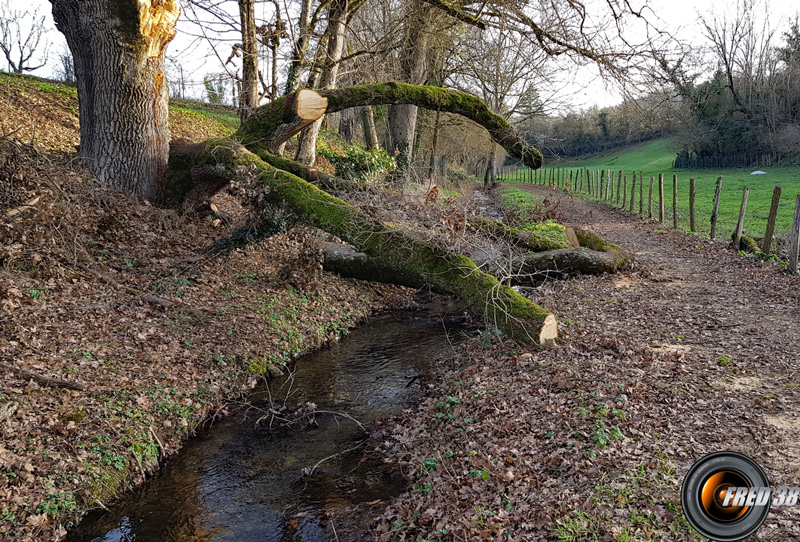 Le petit ruisseau.