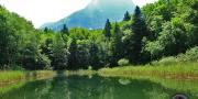 Lac noir photo