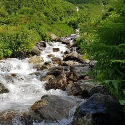 Le ruisseau de la Balme.