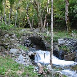 Ruisseau de rif Bruyant.
