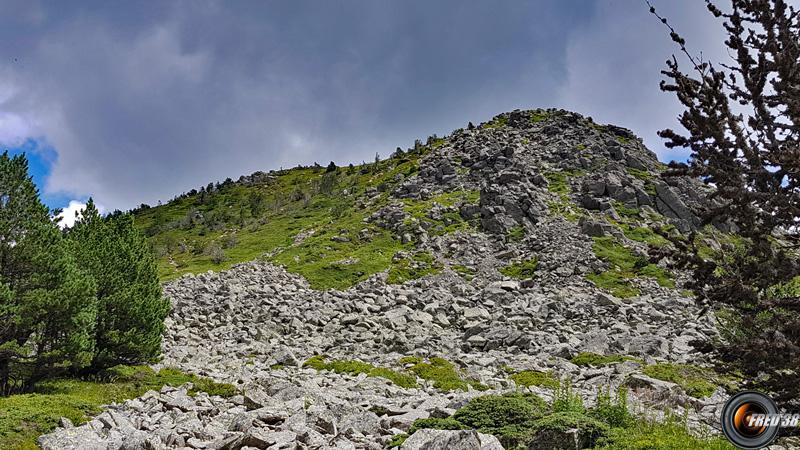 Mont mezenc photo