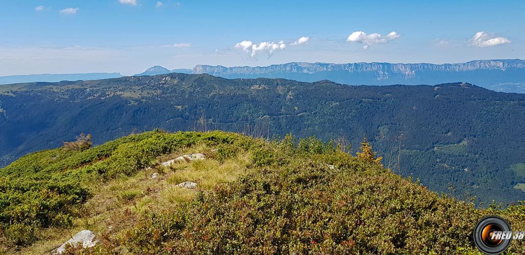 Le sommet et en fond la Chartreuse.