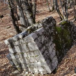 Un reste de la tour dans les bois.