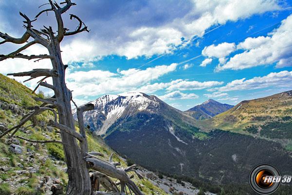 La Montagne de Boulès et en fond le Mourre Frey.