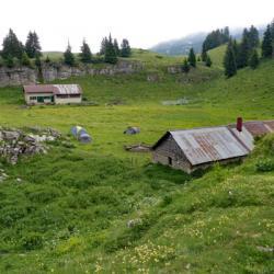 Cabane et bergerie de l'Alpette.