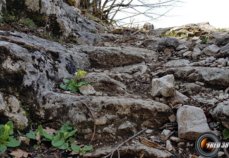 Les marches taillées dans la roche.