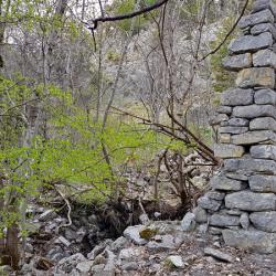 Ruines de la bergerie,