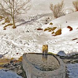 Fontaine de Saint-Sornin