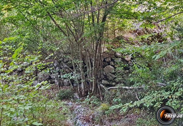 Sentier au fond du vallon de Fontaine Froide.