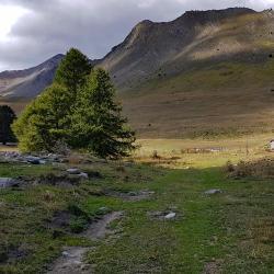 La bergerie et  le vallon de Bachasses.