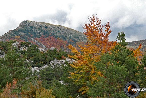 Le sommet, vu du Pas du Loup.