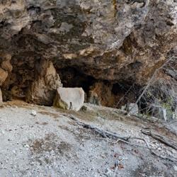 La grotte de la Barre Mangin.