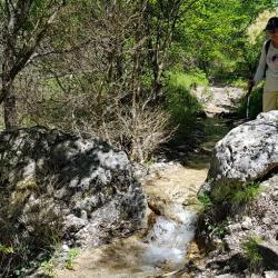 Ruisseau sur le sentier.