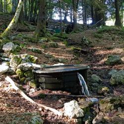 Fontaine des Sangliers.