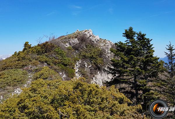 Le sommet du Charbonnier.