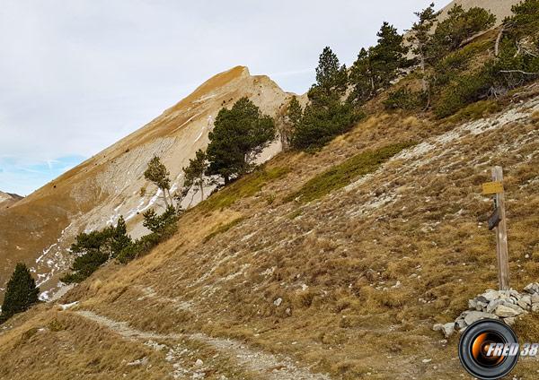 Le sommet vu du col de Plate-Contier