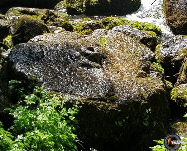 Les restes de l'ancien moulin